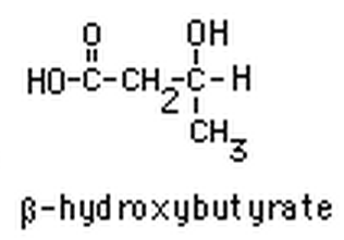 Beta-hydroxybutyrat