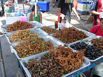 Deep-fried insects for human consumption sold at food stall in Bangkok, Thailand