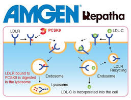 AMGEN-PCSK9