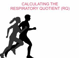 Respiratory Quotient - video