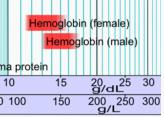 blod-hemoglobin