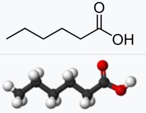 Hexansyra